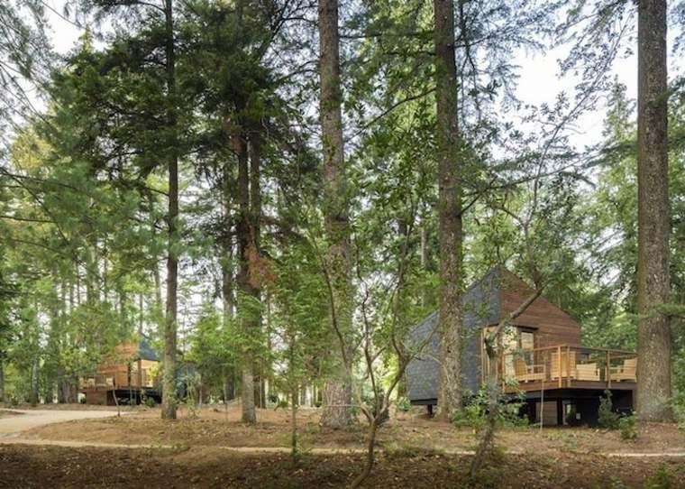 casas prefabricadas en el bosque