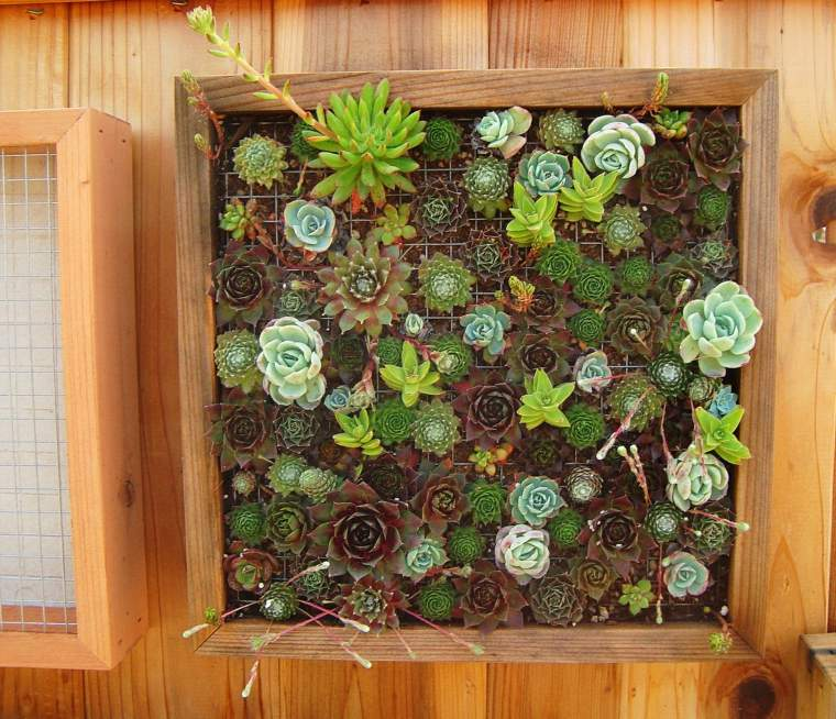 jardines verticales Diy originales
