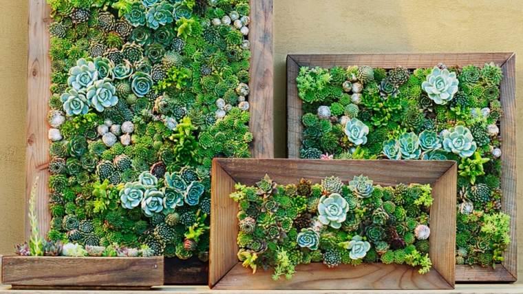 jardines verticales Diy con suculentas