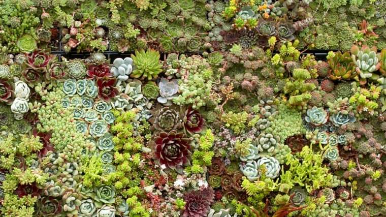 jardines verticales Diy de palets