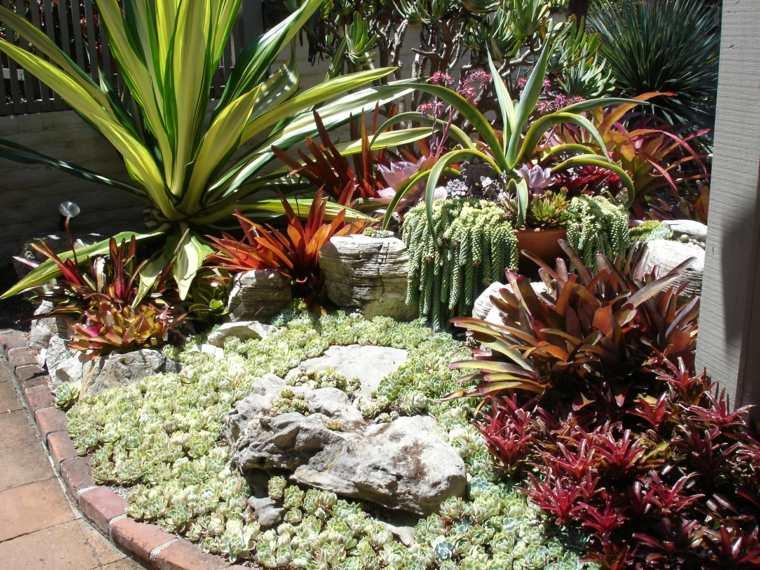 ideas de paisajismo moderno con suculentas y cactus