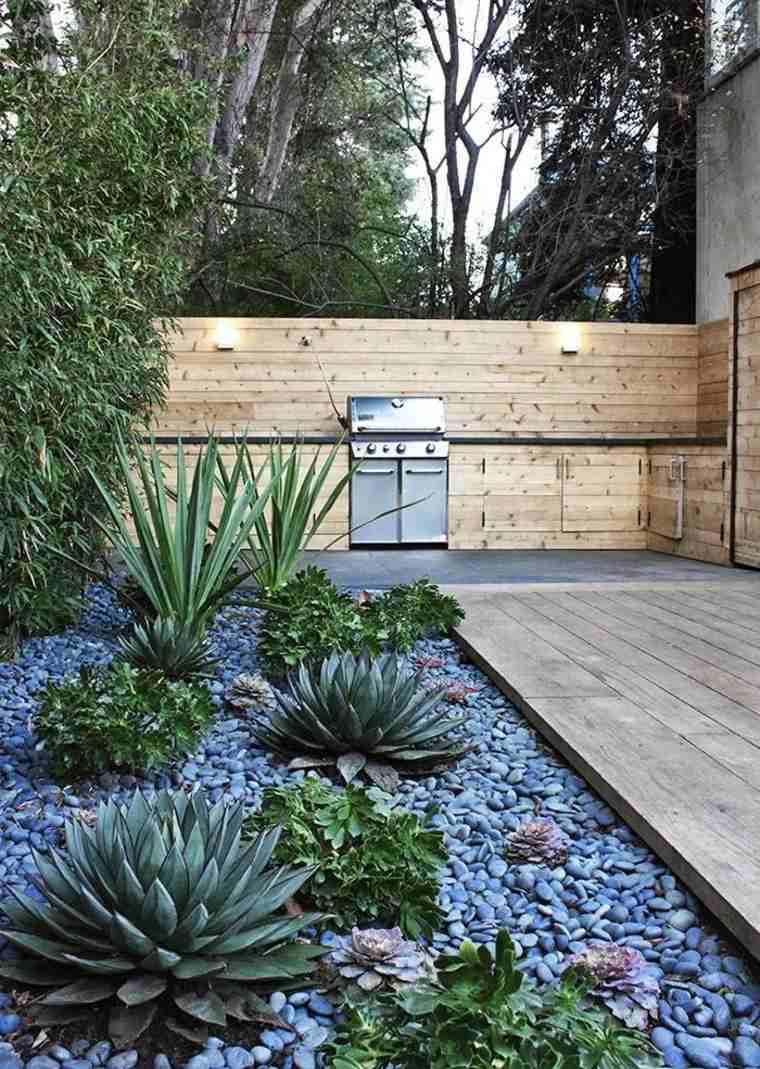 patio moderno con suculentas