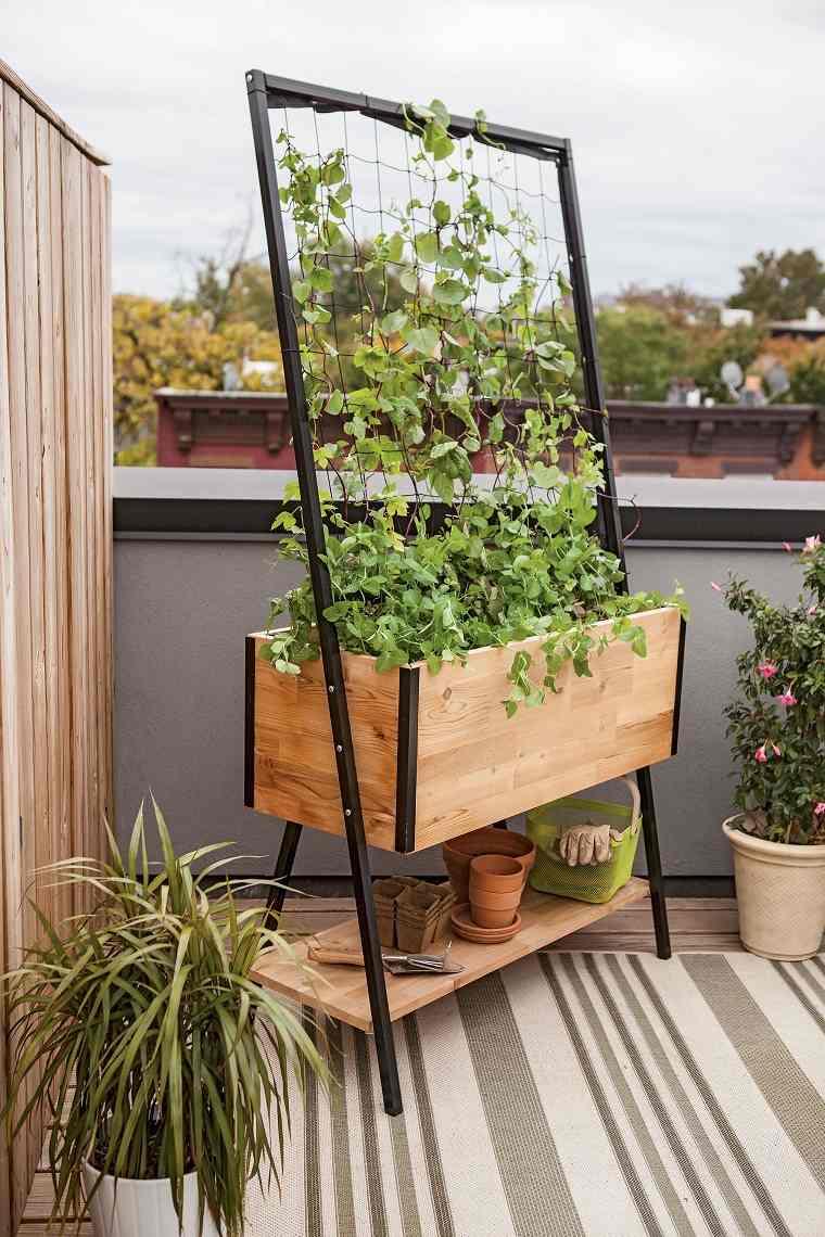 plantas-jardin-exterio-diseno-moderno