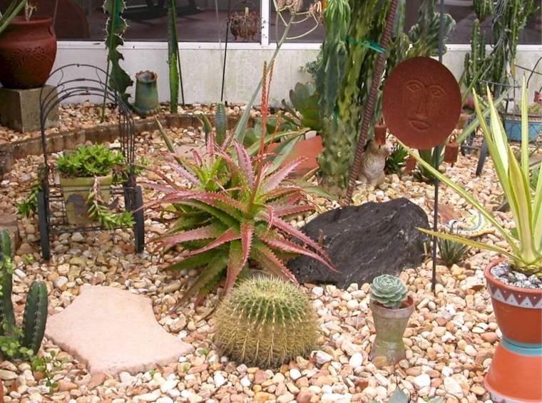 pequeos jardines con cactus