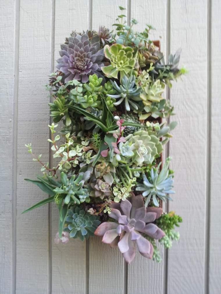 jardín vertical de suculentas pequeño
