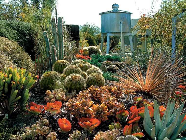 impresionante jardin con cactus