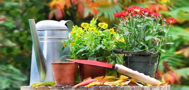 fertilizar el suelo