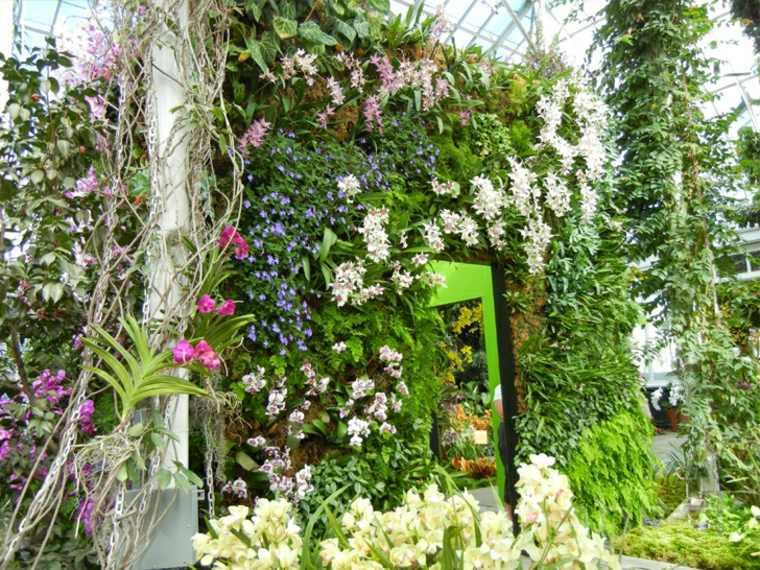 como plantar un jardín vertical