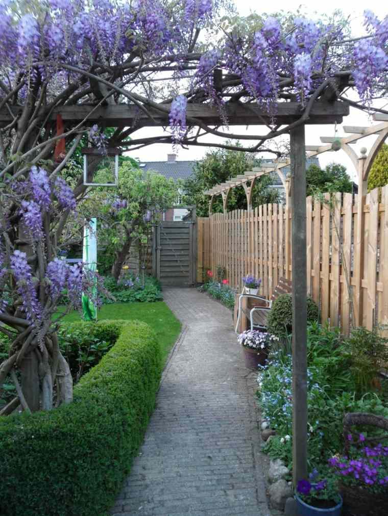 ideas para decorar el jardín con glicinia