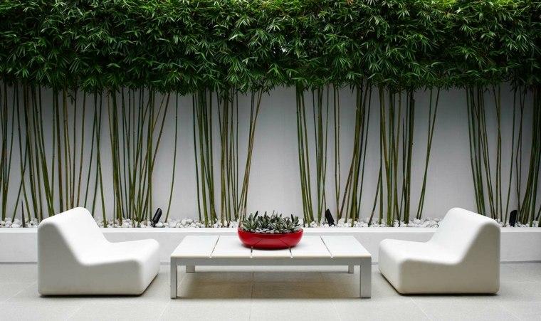 diseño de jardines-estilo-minimalista