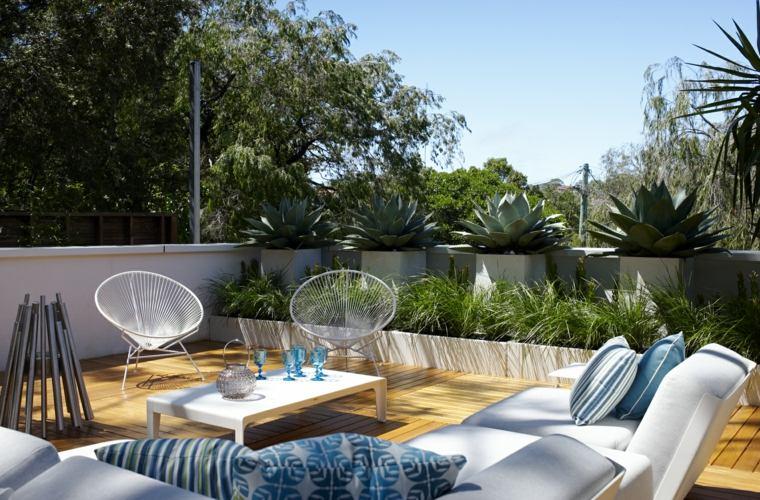 diseño de jardines-estilo-suculentas-grandes