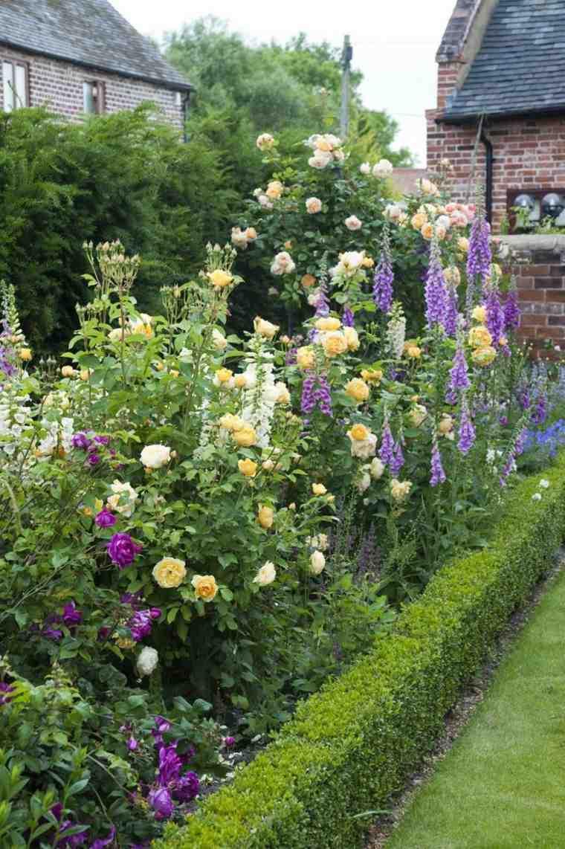 fotos de jardines bonitos