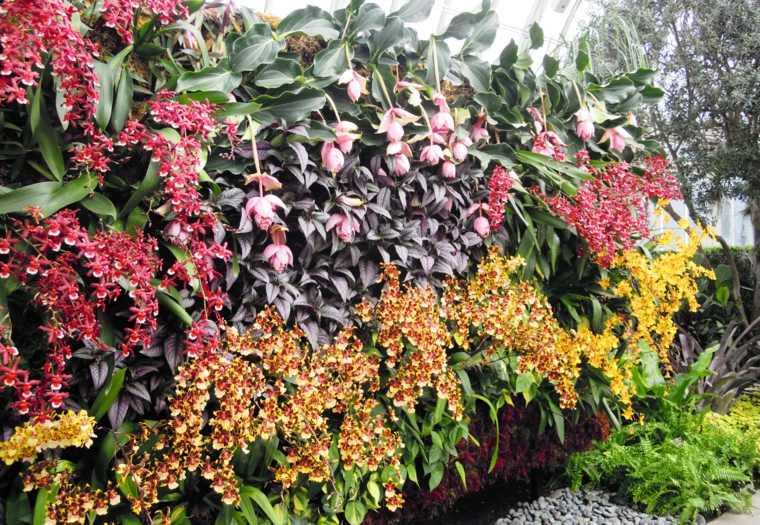 hermoso jardín vertical