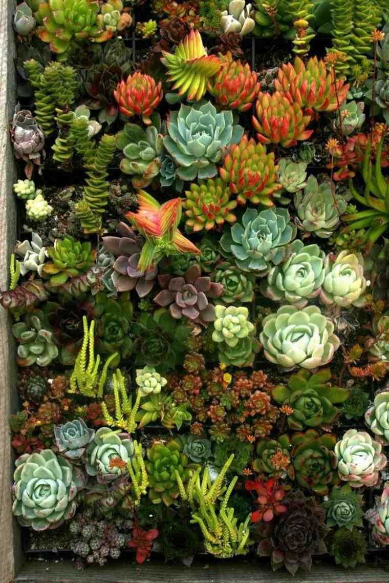 jardin vertical la tendencia en jardiner a que apasiona