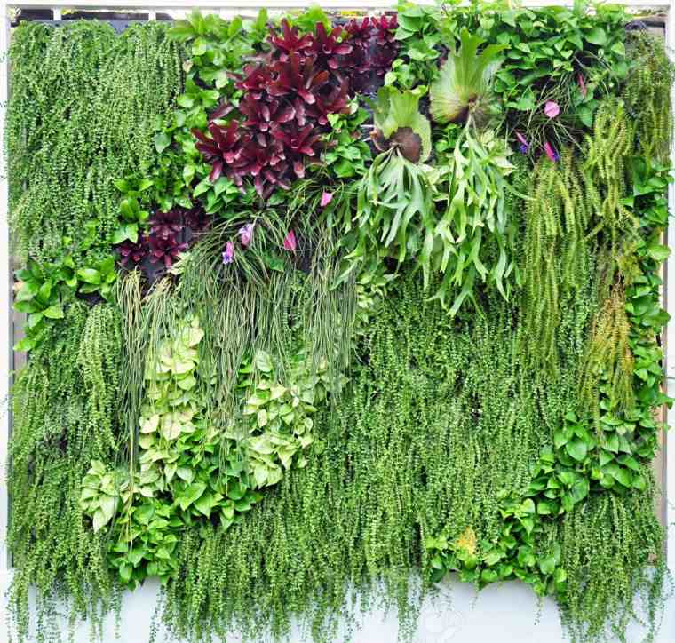 Jardin Vertical La Tendencia En Jardiner 237 A Que Apasiona