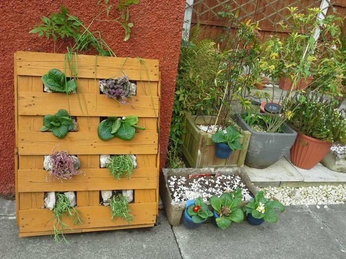 jardines verticales pale patio tradicional