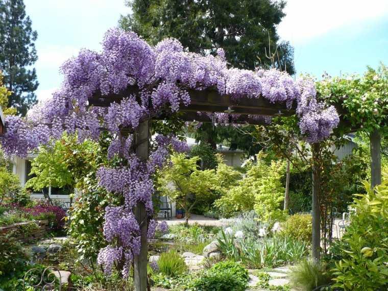 ideas para decorar un patio con wisterias