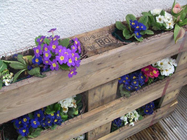 vista superior flores primaverales