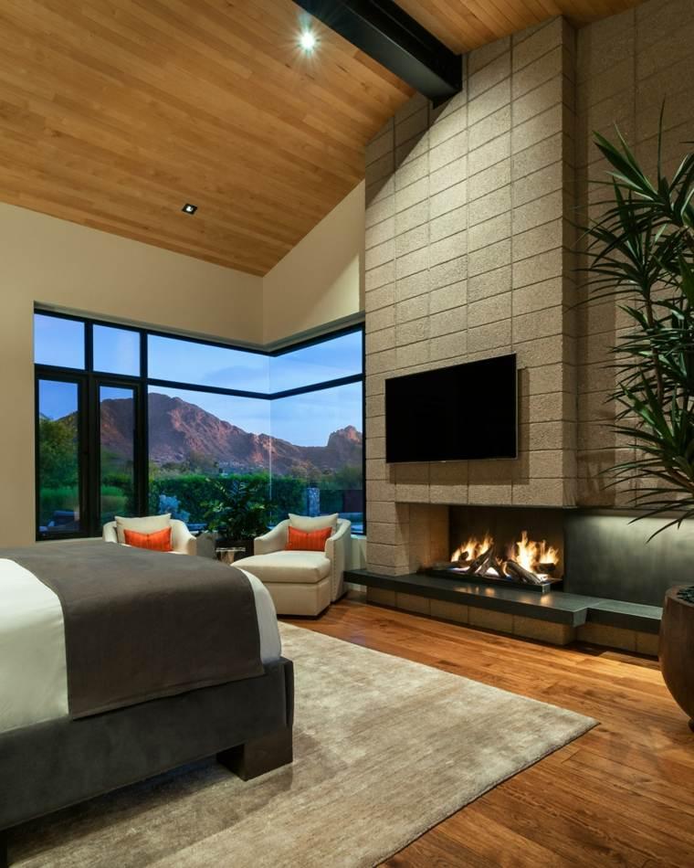 dormitorios con chimeneas modernas-diseno-television-estilo