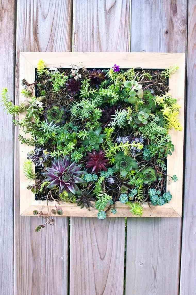 consejos para plantar un jardín vertical