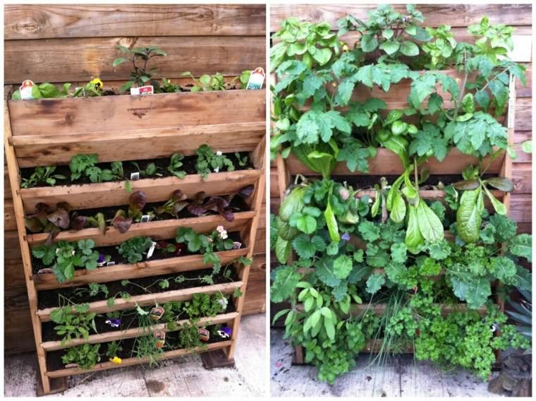 ideas para plantar un jardín vertical