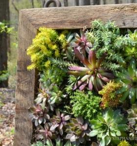 Ideas Para Decorar Jardín Con Espejos Más De 40 Fotos