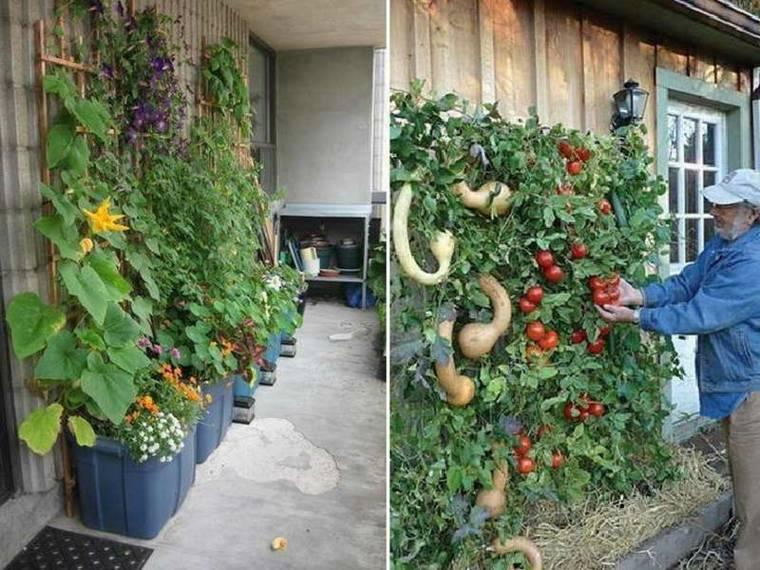 cómo plantar jardines verticales Diy