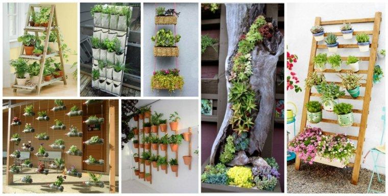 cómo plantar estupendos jardines verticales