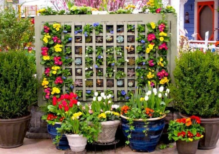 plantas en maceteros