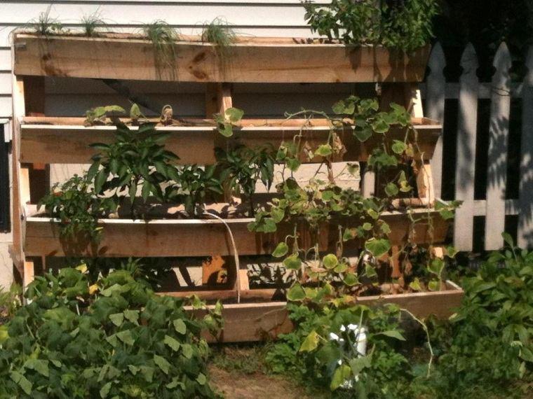 plantas-diy-estilo-jardin