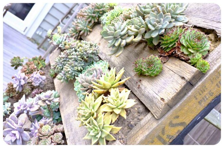 plantar jardines verticales Diy en palets