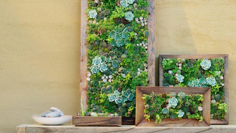 plantar jardines verticales Diy en marcos de madera