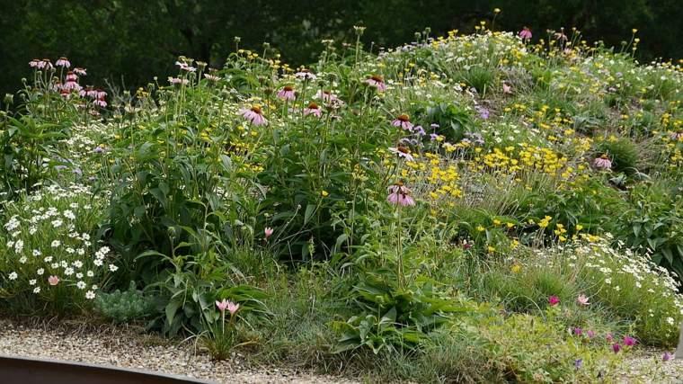 acceso-jardin-copioso-tradicional
