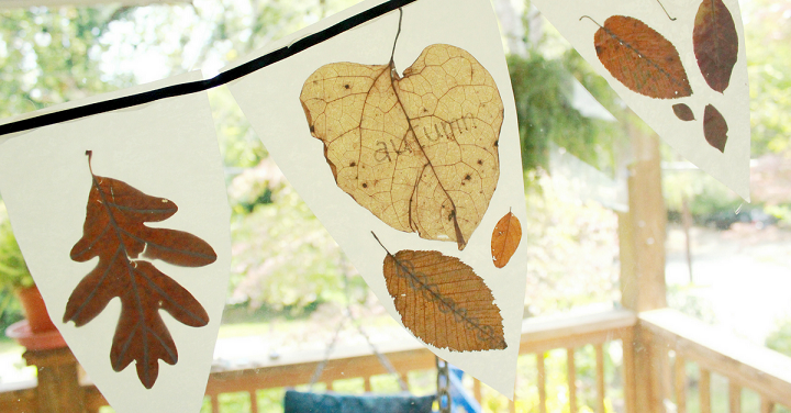 banderas pequenas hojas otonales
