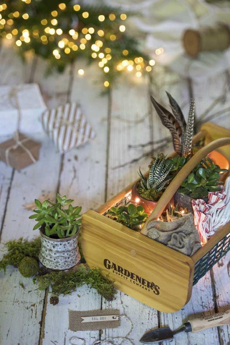 centros-de-mesa-de-navidad-ideas-luces-plantas-suculentas