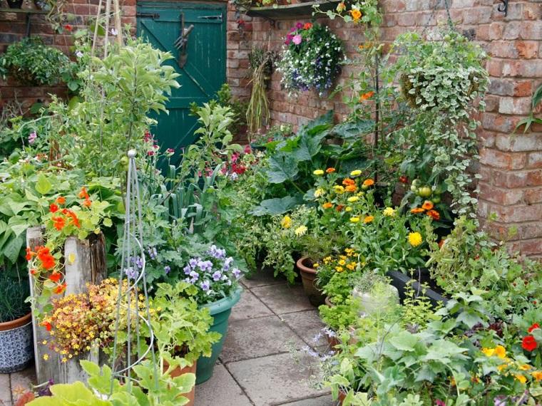 combinacion plantas patio tradicional