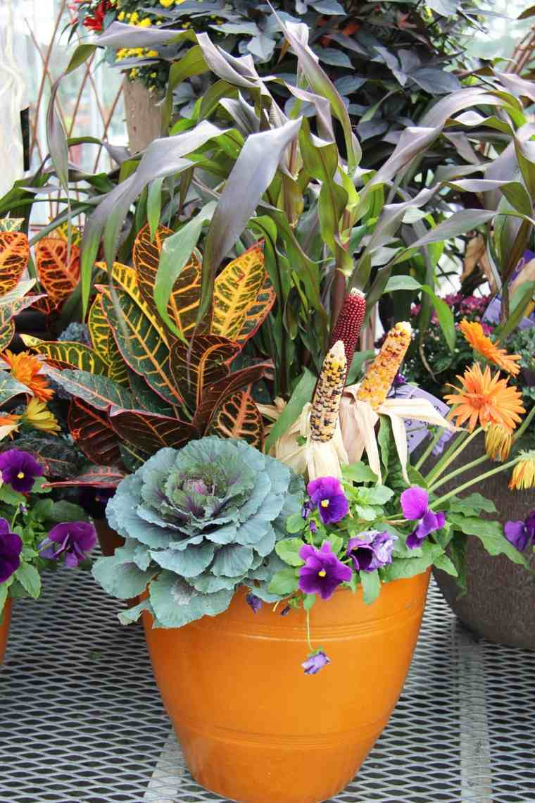 combinaciones plantas elegantes verdes