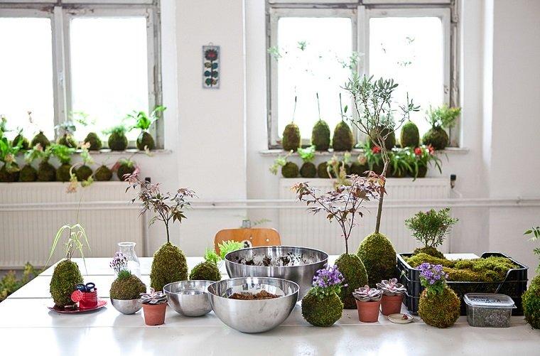 conceptos muebles plantas modernas