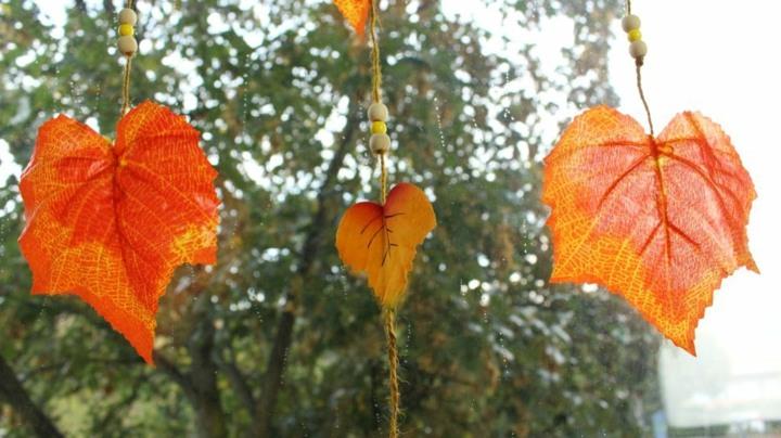 hojas ideas decoracion ventanas