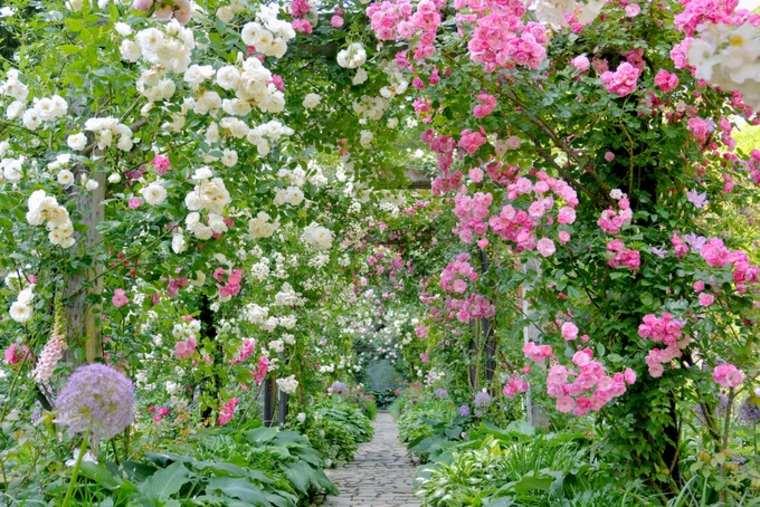 jardin-de-rosas-en-Japon