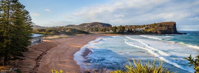 playas en Avalon Beach