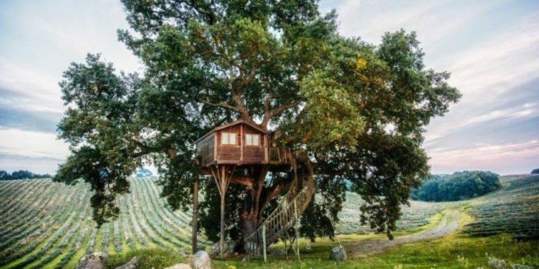 construir cabañas en el árbol