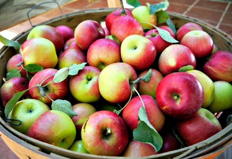 cesto-de-manzanas