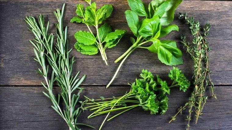 costillas asadas-ajo-carne-hierbas-frescas