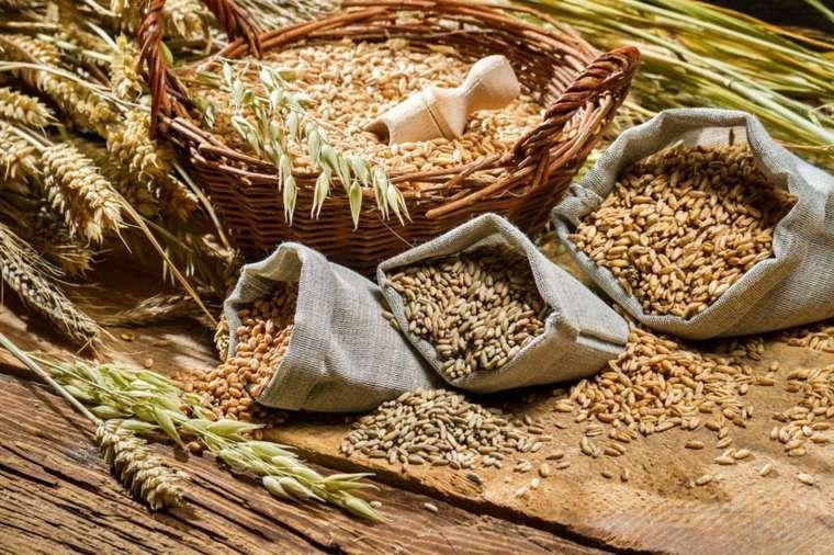 dieta saludable granos-integrales