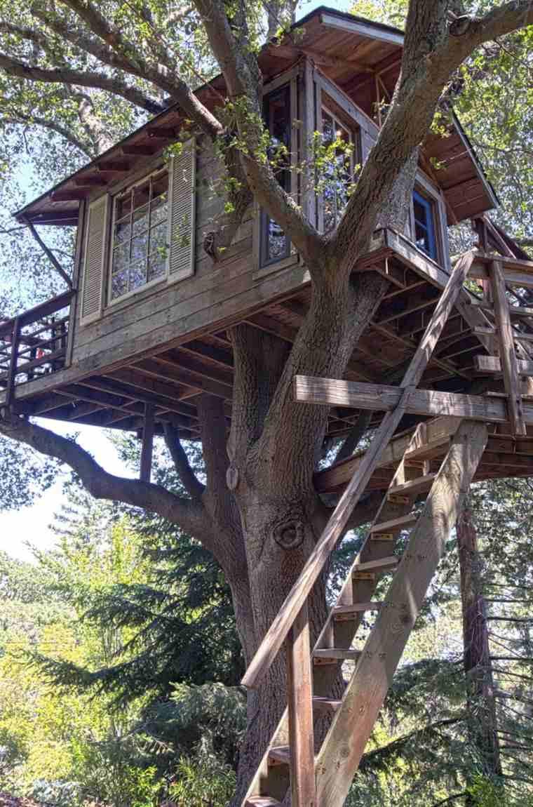 estupenda casita en el árbol