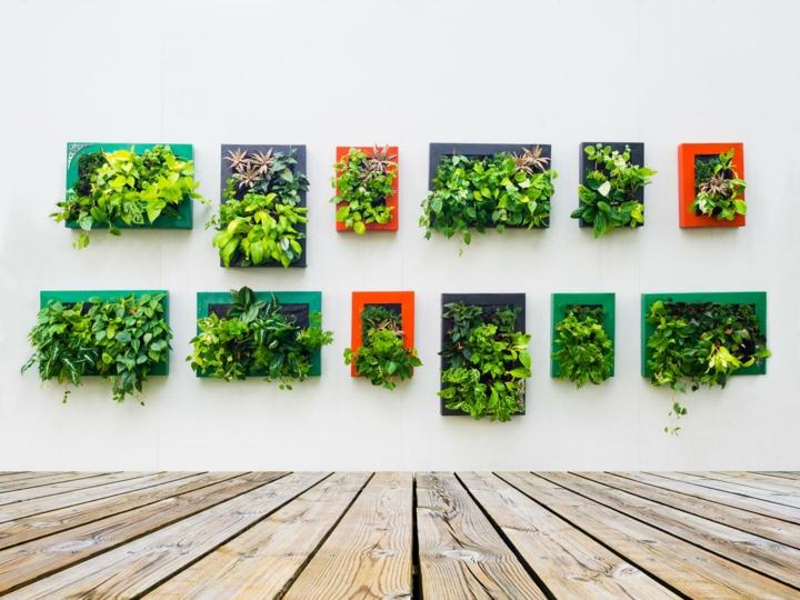 efectos-coloridos-jardines-verticales