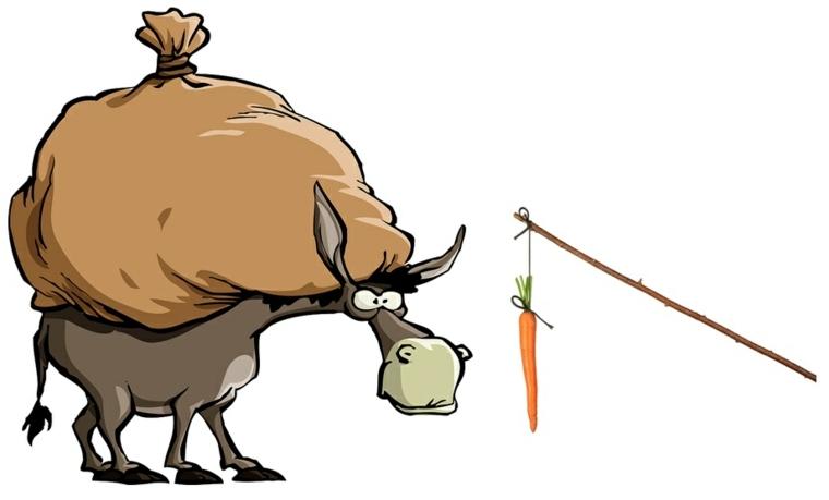 el-burro-y-la-zanahoria