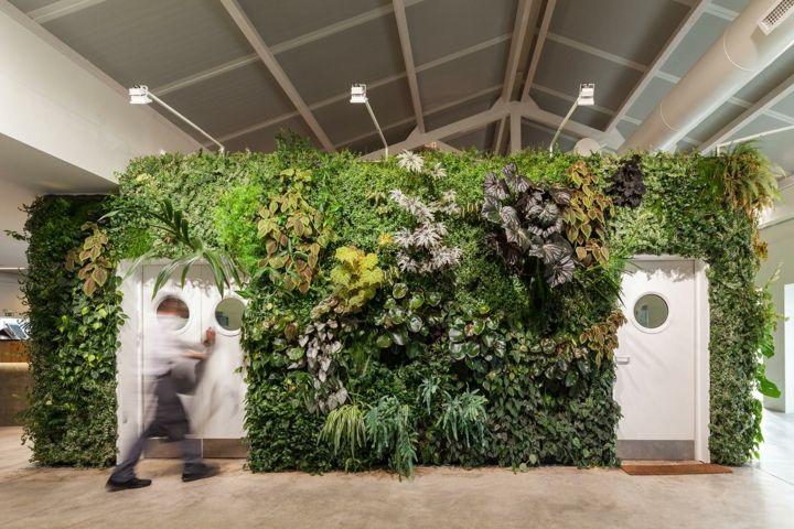 estilo-tropical-tupido-plantas