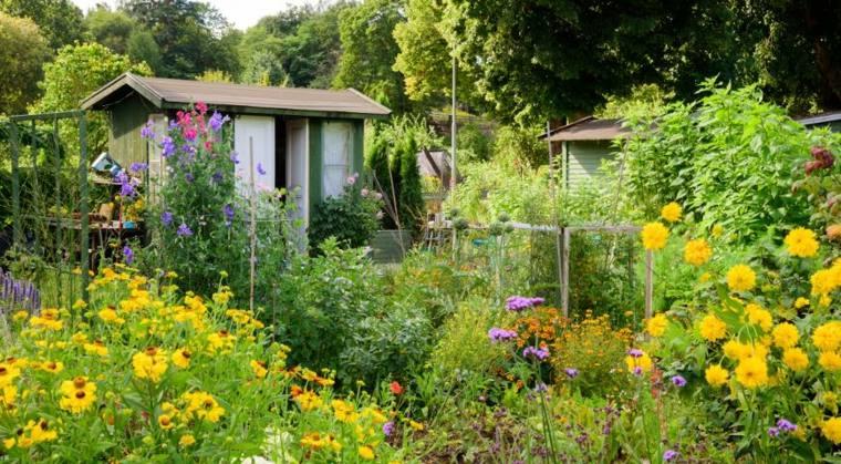 flores-amarillas-jardin